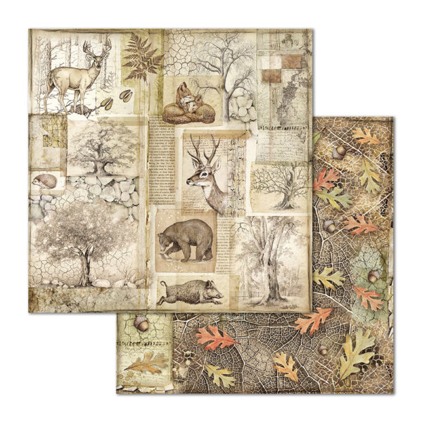 Stamperia Forest 12 x 12 Paper Pack